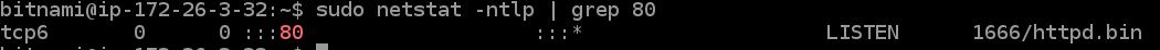 netstat-ntlp-grep-80